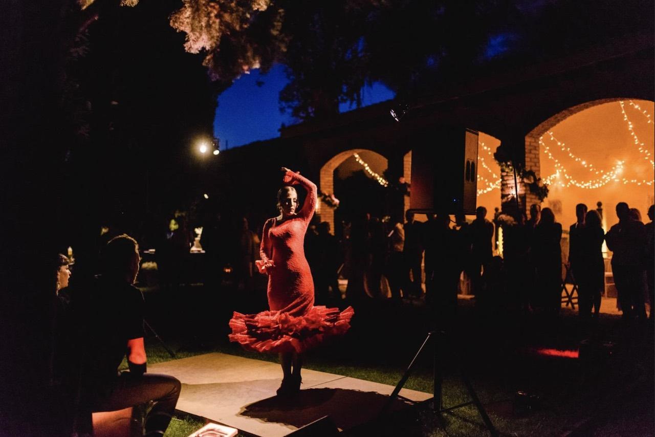 A Flamenco dancer performing